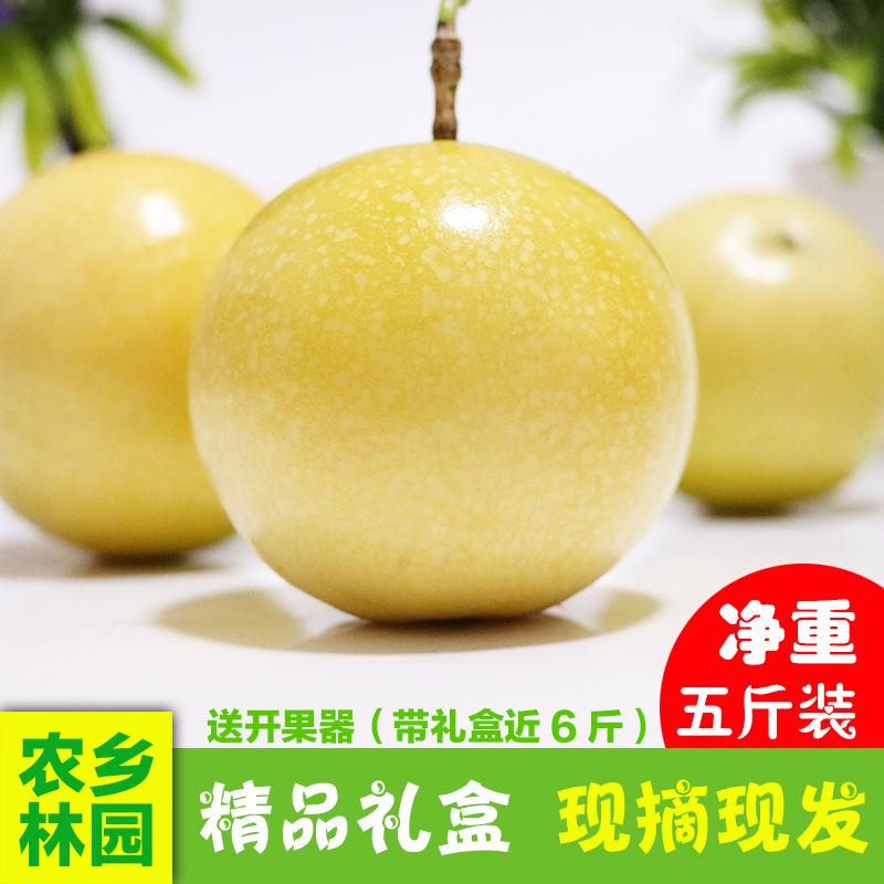 热销0件限时2件3折新鲜南方孕妇水果台湾引进黄金黄皮百香果芭乐香纯甜特价5斤装
