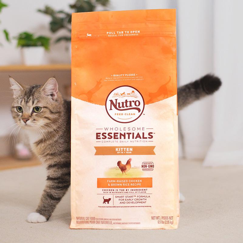 现货 NutroChoice美士天然幼猫粮奶糕猫粮鸡肉糙米特级 6.5磅热销349件限时2件3折