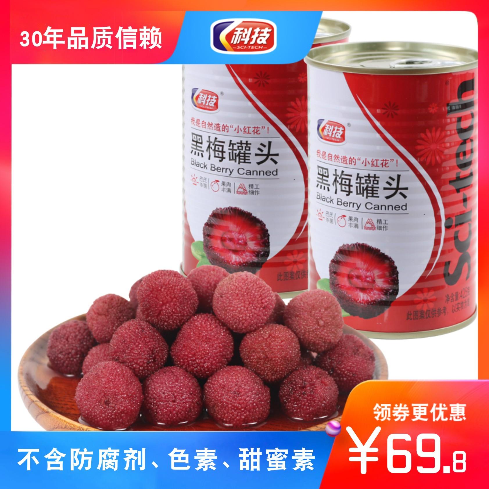 12罐科技糖水黑梅罐头425g 新鲜杨梅 台州特产 餐饮冷盘 人气产品