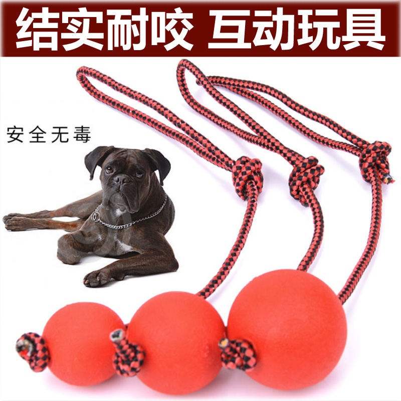 Pet Toy Ball Gold Mao Tedibi Bear Bomeira Rope Solid Rubber Bite Resistant Ball Molar Dental Cleaning