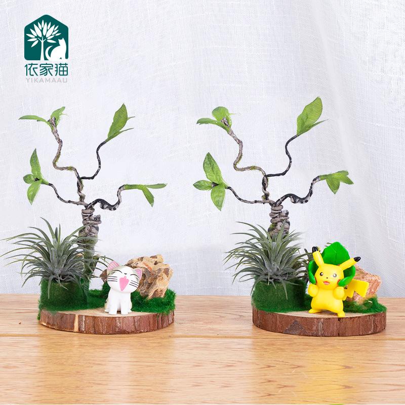Q-童话故事空气凤梨懒人无土植物盆栽叮当樱桃小丸子精灵微景观包