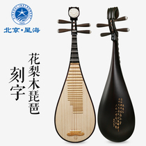Xinghai PIPA Musical instrument African rosewood wood flower blossom rich headwear beginner to play pear wood pipa