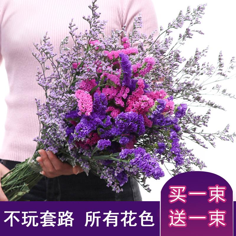 云南勿忘我干花花束混搭家庭饰品家居摆设办公装饰鲜花拍摄道具