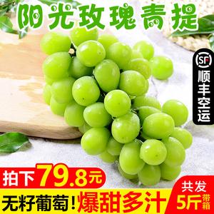 【顺丰包邮】云南阳光玫瑰青提带箱5斤 新鲜无籽葡萄水果香印提子
