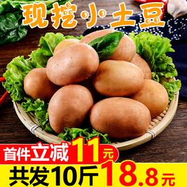 云南红皮小土豆10斤新鲜蔬菜黄心土豆农家自种马铃薯洋芋整箱包邮图片