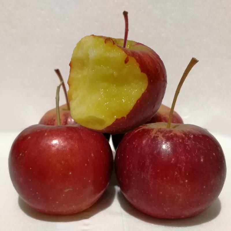 东北特产秋果龙丰果 新鲜沙果 酸甜脆孕妇水果 带箱5斤包邮
