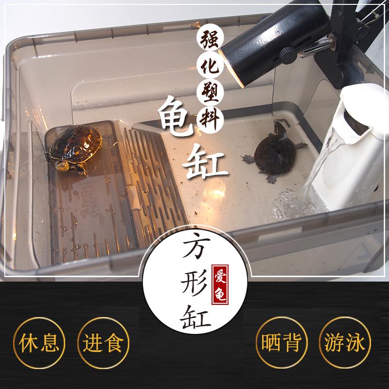 乌龟缸小养龟盆带晒台鱼缸水陆缸水龟草龟巴西龟活体饲养塑料盒箱