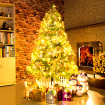 1.8 m Pine needle Christmas Tree Package 1.5 2.1 2.4 Luxury encrypted Christmas tree Christmas decorations