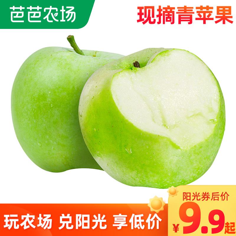 新鲜青苹果4斤头茬平果当季孕妇水果酸甜富士青蛇果整箱5批发包邮