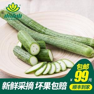 【小汤山】丝瓜400g 99元顺丰新鲜蔬菜