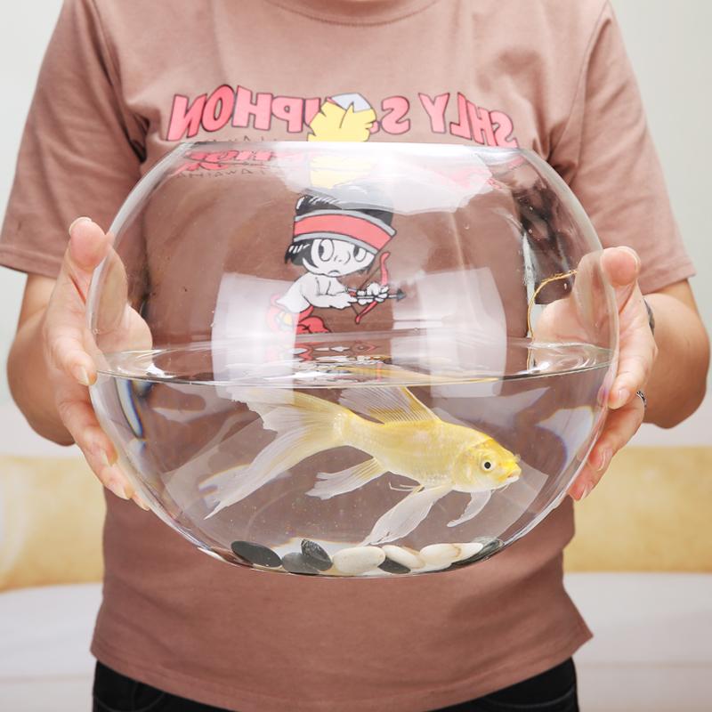 创意玻璃鱼缸圆形生态水族箱大号乌龟缸金鱼小型桌面造景水培花瓶