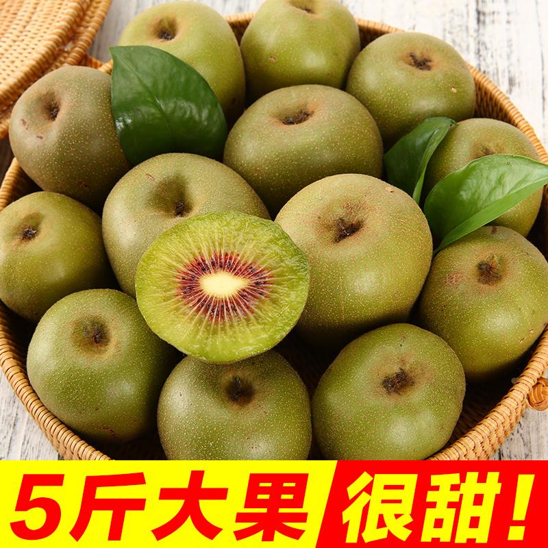 四川红心猕猴桃新鲜5斤包邮蒲江水果奇异果红星弥猴桃泥猴桃大果