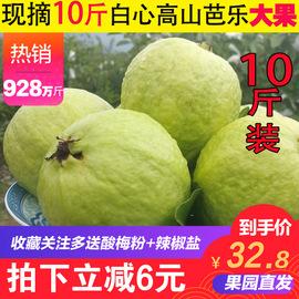 廣西高山白心番石榴芭樂10斤裝 新鮮熱帶水果 清脆香甜圖片