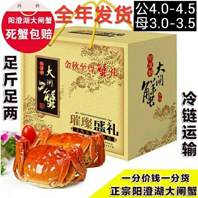 阳澄湖大闸蟹鲜活现货六月黄螃蟹公4-4.5母3.0-3.5两10只礼盒装