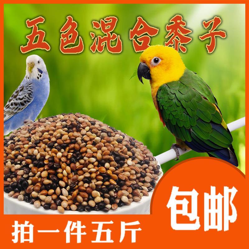 インコの五色の黍の虎皮の玄鳳の牡丹の飼料の文鳥の芙蓉の金の糸の青いスズメの鳥の混合の糜子は郵送します