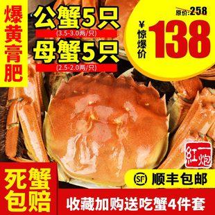 正宗大闸蟹鲜活新鲜清水海鲜水产河蟹大红膏全肥黄满礼盒顺丰包邮
