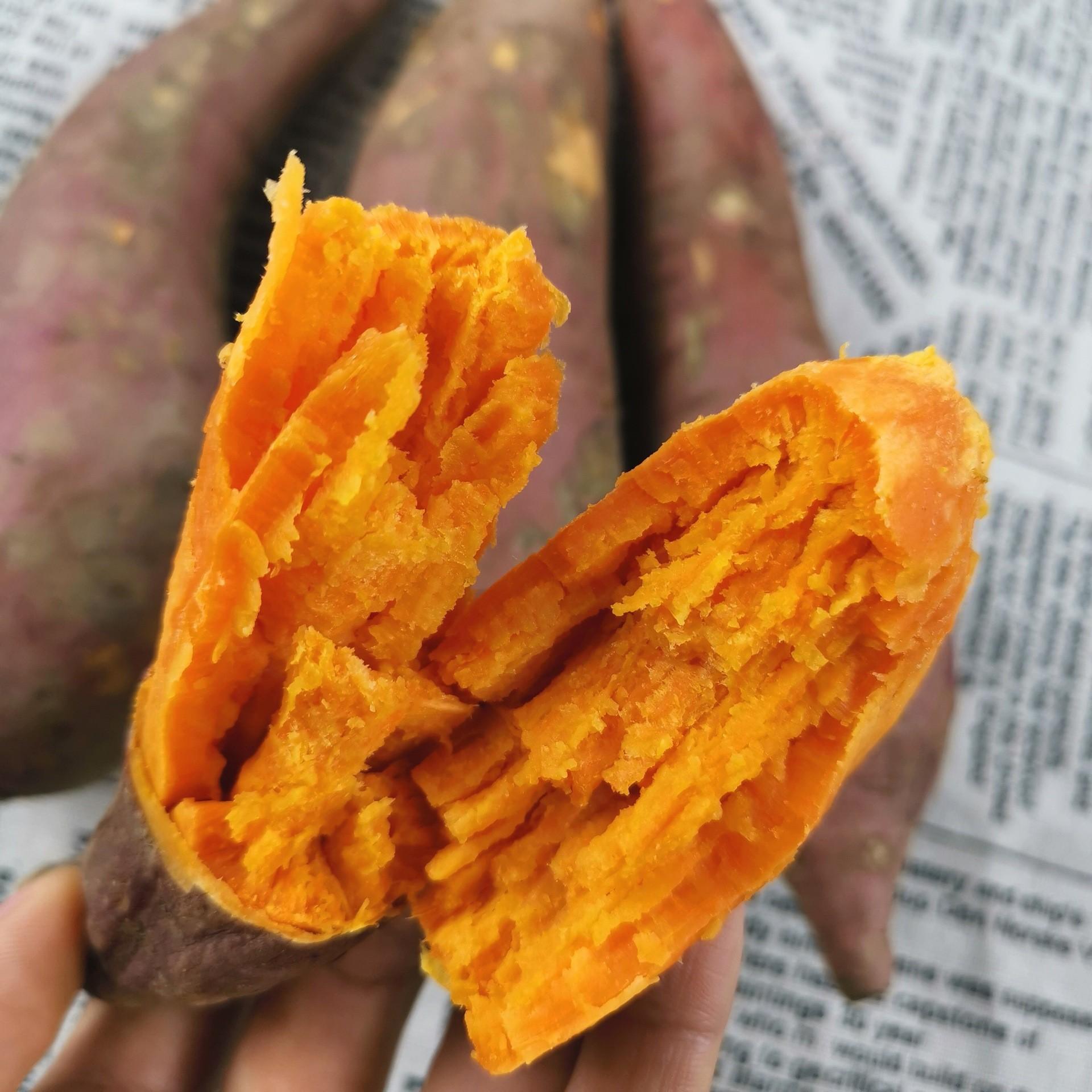 正宗福建大叶红六鳌地瓜红蜜薯精选沙地红薯漳州红心地瓜红番薯