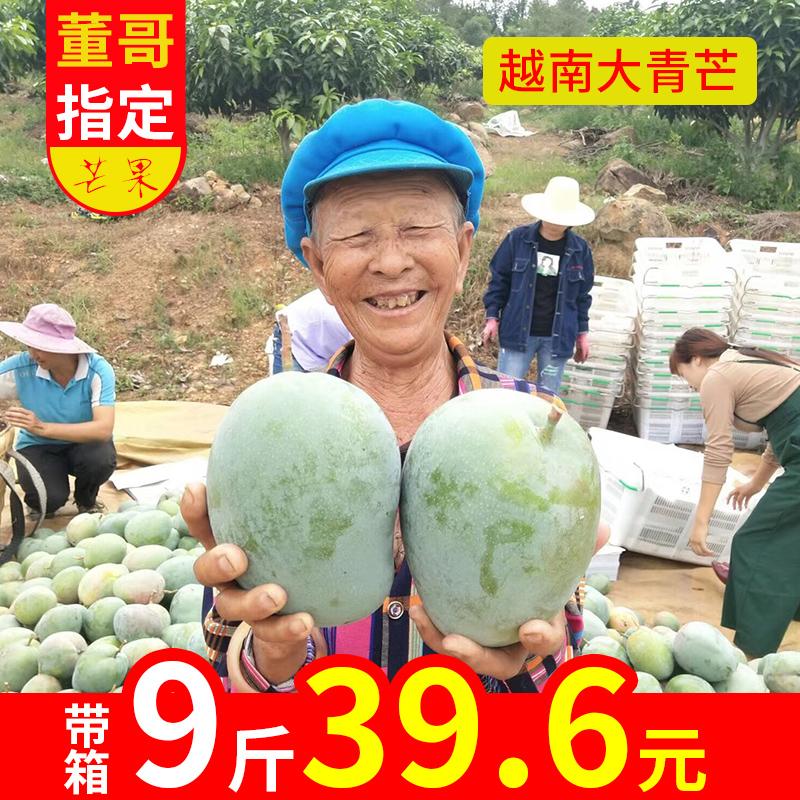 越南大青芒果2019现摘现发当季广西芒果新鲜带箱9斤水果mango青皮