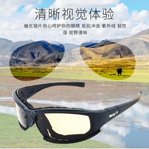 新品CS偏光军版美国Daisy x7护目镜战术眼镜墨镜射击夜视风镜
