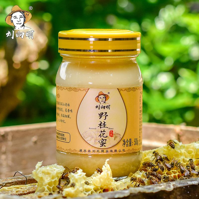 刘向明土蜂蜜新品野桂花蜜传统滋补营养品农家自产野生桂花蜜500g