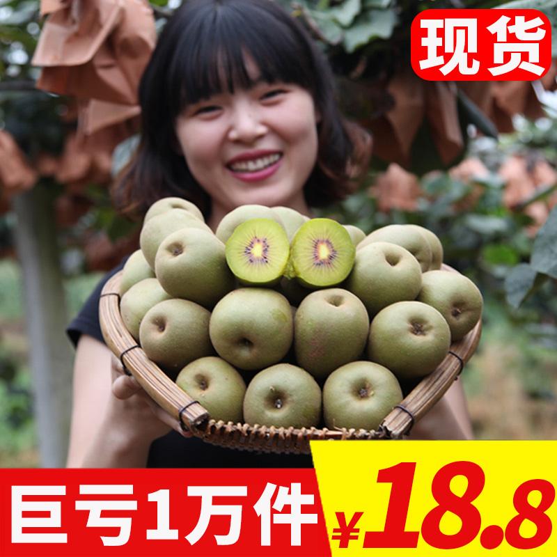四川蒲江红心猕猴桃大果奇异果红肉新鲜当季非浦江黄心弥猴桃5斤