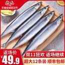 包邮 秋刀鱼 约12条装 新鲜深海海鲜烧烤食材日式 鲜活1600g 鲜 冷冻