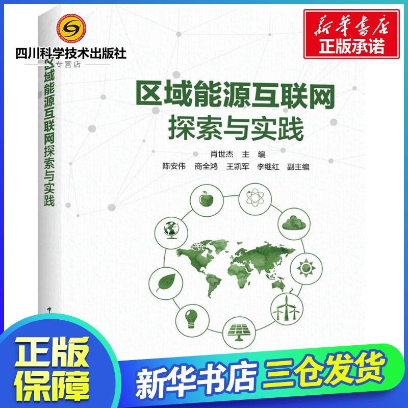 区域能源互联网探索与实践 肖世杰 主编 石油 天然气工业专业科技 新华书店正版图书籍 中国电力出版社