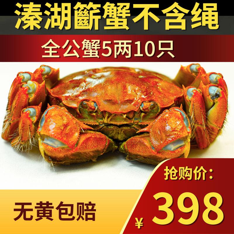 5两全公蟹大闸蟹10只泰州市溱湖簖蟹清水鲜活特大螃蟹礼品盒兴化