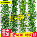 仿真葡萄叶假花藤条水管道装 饰绿植物吊顶树叶子塑料藤蔓绿叶缠绕