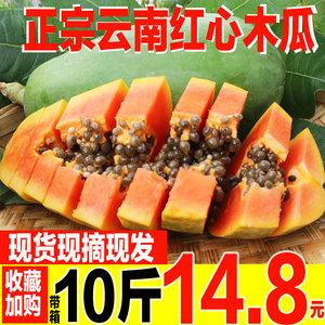 云南红心牛奶木瓜10斤水果新鲜包邮当季整箱水果木瓜应季水果9斤