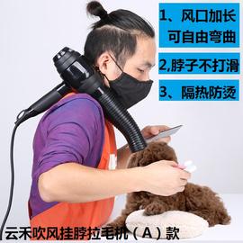 升级版宠物电吹风机专业吹水机拉毛机宠物专用风筒A款和新三合一图片