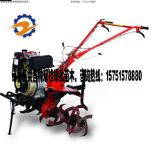 Seaway Microtiller Diesel Loosening Machine Rotary Tiller Small Tillage Machine Ditcher Rural Management Machine Start-up