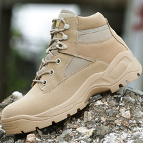 Outdoor low-help desert boot Army Boots Mens special Forces combat Boots tactical Boots Army fans mountaineering shoes Marine flight Boots Autumn