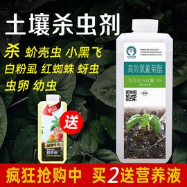 土壤杀虫剂花卉植物杀虫药地下害虫小黑飞蚜虫蚧壳虫盆栽除虫剂图片