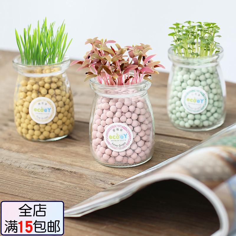 桌面可爱趣味负离子小盆栽迷你办公室创意水培种子可爱微景观植物