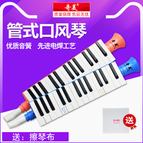 Chimei Childrens mouth piano 13 keys beginner elementary school students with classroom teaching portable horn Type 27 key mouth piano