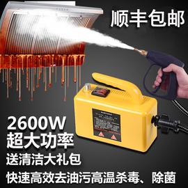 高温蒸汽清洁机多功能清洗器家用商用家政空调油烟机高压杀菌除螨