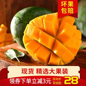四川攀枝花芒果特大凯特芒净重5斤香甜青芒当季新鲜现摘孕妇水果