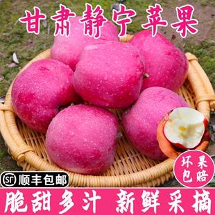 包邮 甘肃静宁红富士苹果现摘当季 新鲜水果脆甜非冰糖心阿克苏10斤