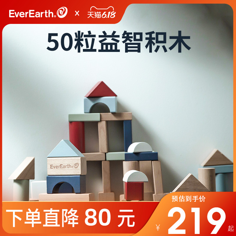 everearth50粒宝宝早教积木玩具