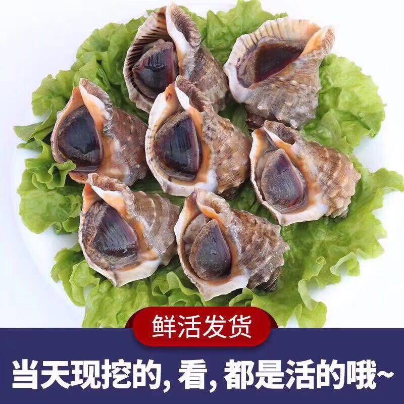 生蚝海螺混搭99元2斤海螺 5斤生蚝以重量为准, 顺丰包邮