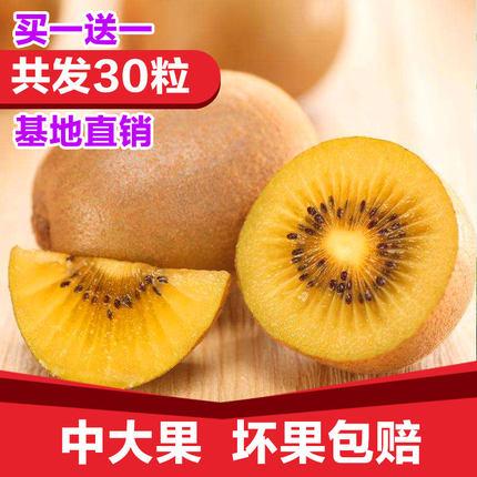 黄心猕猴桃 四川蒲江奇异果猕猴桃新鲜5斤包邮30个当季水果弥猴桃
