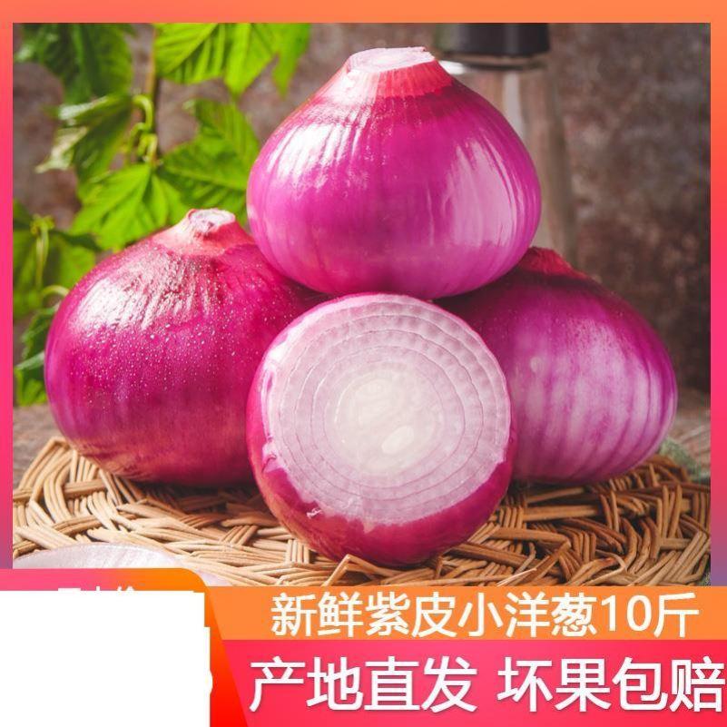 洋葱新鲜 10斤农家自种水果蔬菜中小紫皮葱头红辣中甜圆葱包邮