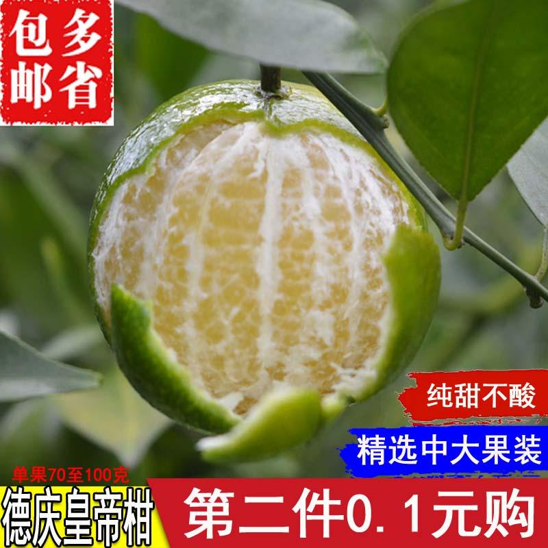 预售正宗德庆皇帝柑贡柑当季新鲜孕妇水果橘子蜜桔子现摘现发包邮