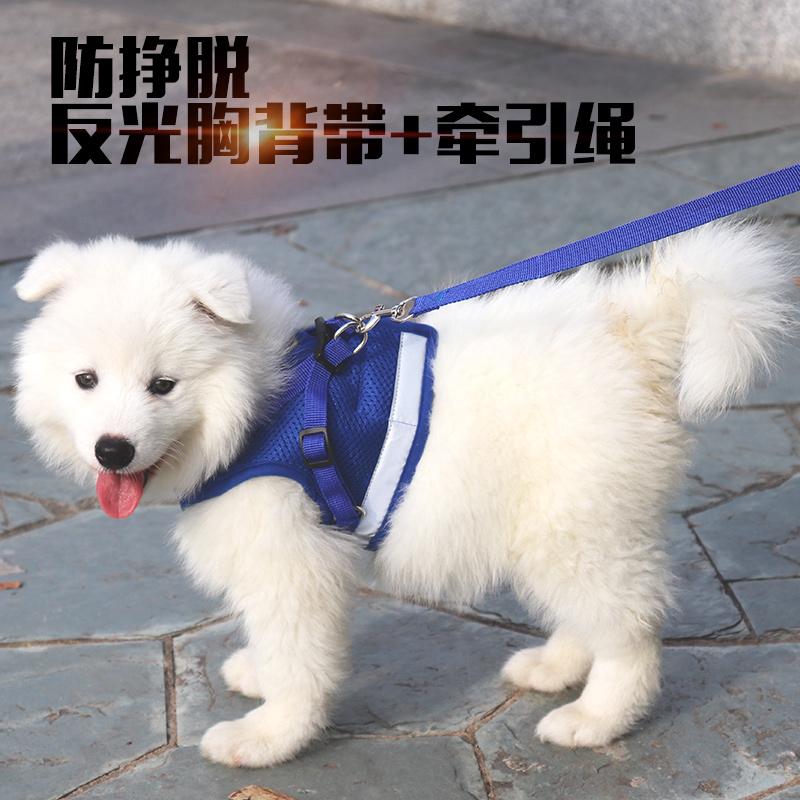 12月03日最新优惠中型小型犬背心式狗链子遛狗绳