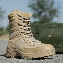 Shield lang Outdoor desert boots combat boots tactical boots flying boots Military boots male genuine wear-resistant Gao Jing shoe boots
