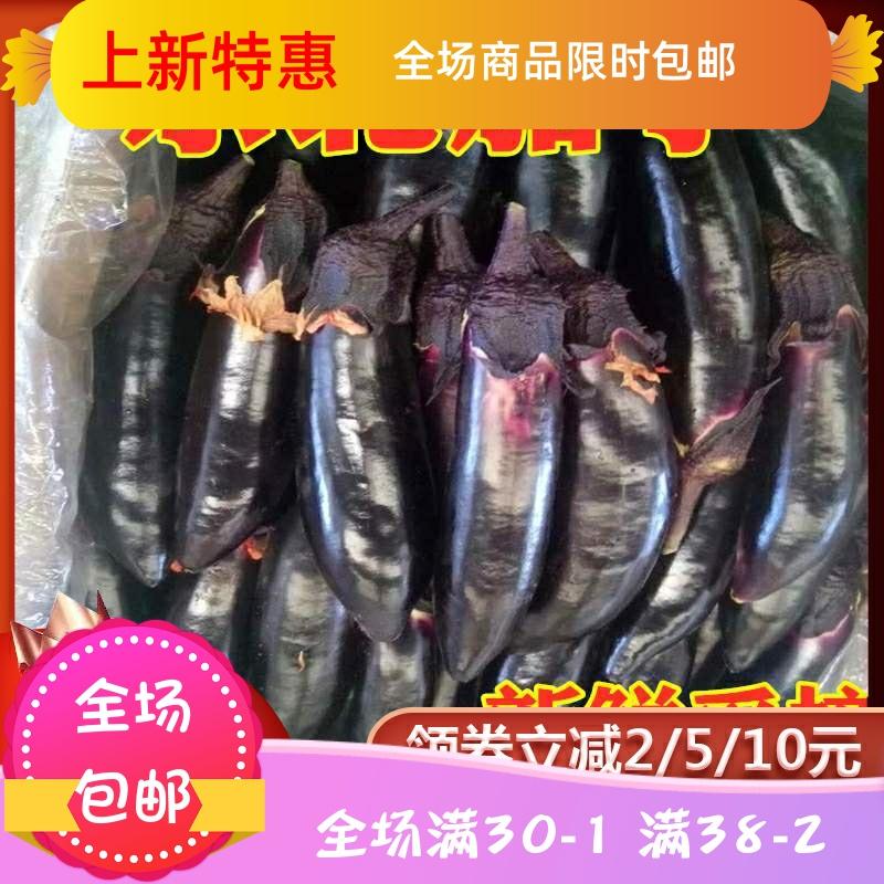 东北茄子黑裤紫把小蒜茄子新鲜农家自种新鲜蔬菜水果特产美食蘸酱