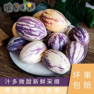 石林特惠红土人参果当地特产批发现摘新鲜水果五斤