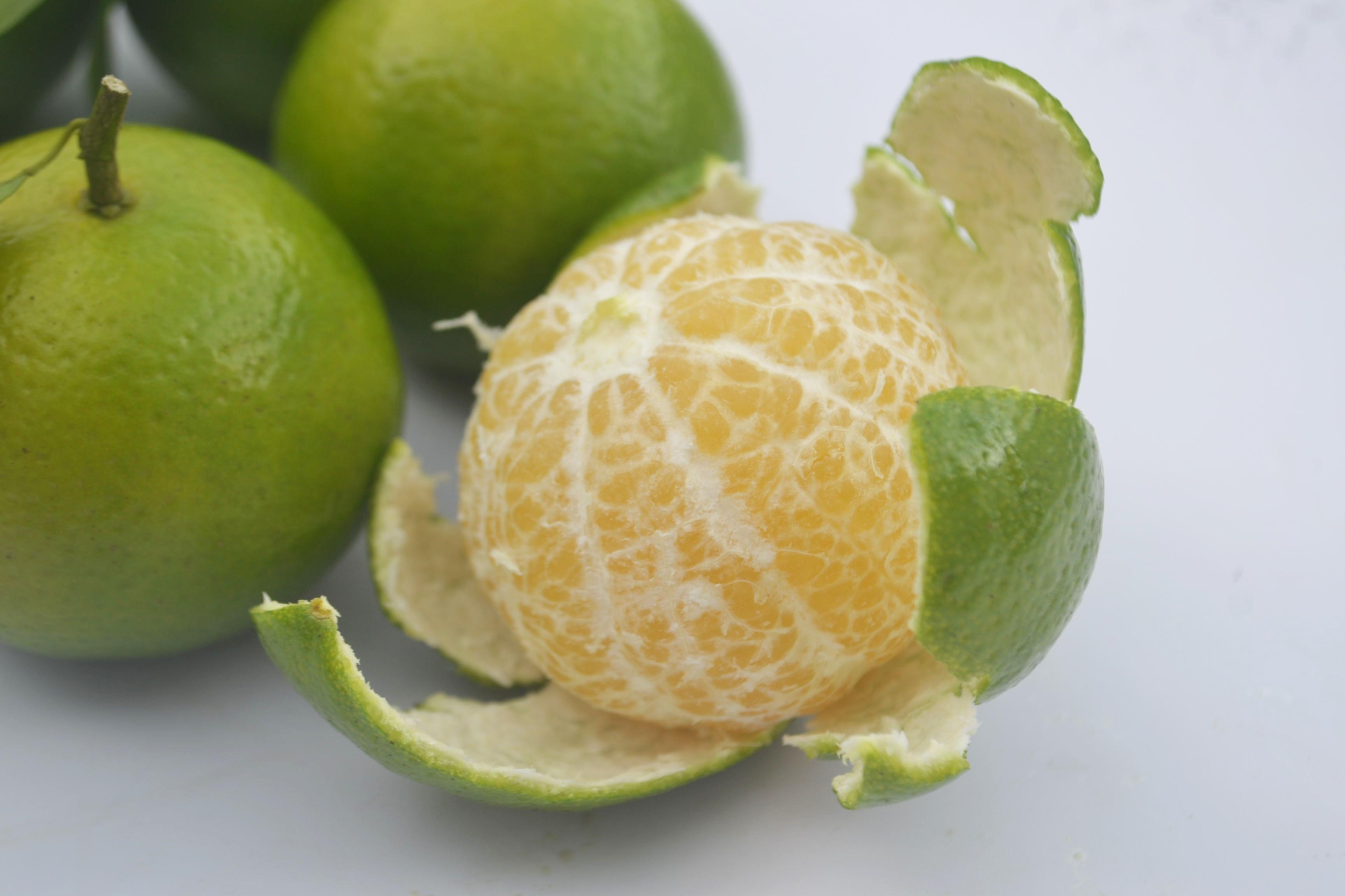 现摘现发皇帝柑新鲜水果正宗德庆贡柑橘桔子十斤礼盒送礼装