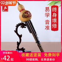调学生初B调降C全黑檀木葫芦丝真黑木专业大人演奏级民族乐器